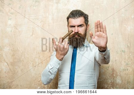 cigar. bearded man or hipster with long beard and stylish hair on serious face in tie and white shirt on textured beige background smoking copy space addiction