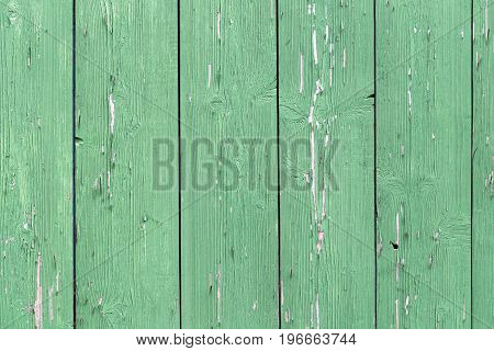 The Old Green Wood Texture With Natural Patterns