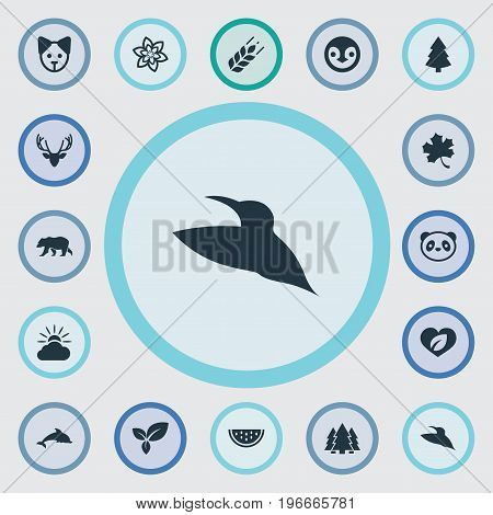 Elements Moose, Diver, Frond And Other Synonyms Dorado, Animal And Diver.  Vector Illustration Set Of Simple Nature Icons.