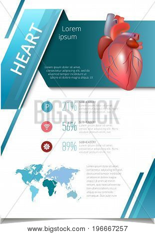 Internal human organs infographic. Medicine poster. heart Medical brochure template. Vector illustration
