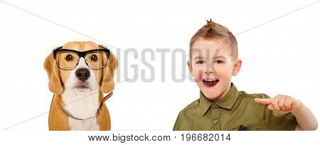 Portrait of laughing boy, pointing finger on a beagle dog wearing glasses, isolated on white background