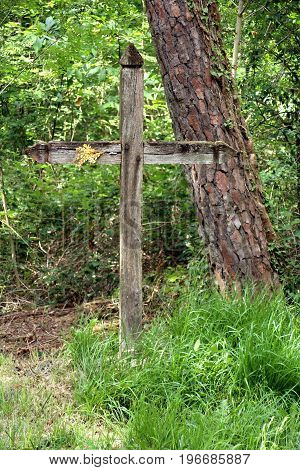 a wooden calvary located in the forest