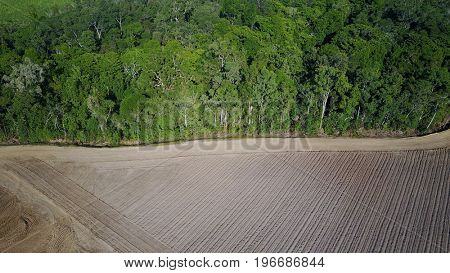 Deforestation. Aerial drone view of rainforest cleared for agriculture development