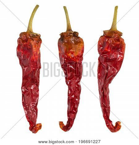 Dry chili pepper isolated. Dried vegetable. Group of peppers