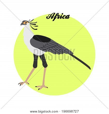 Secretary bird illustration on the background of the circle with the inscription Africa. Vector.