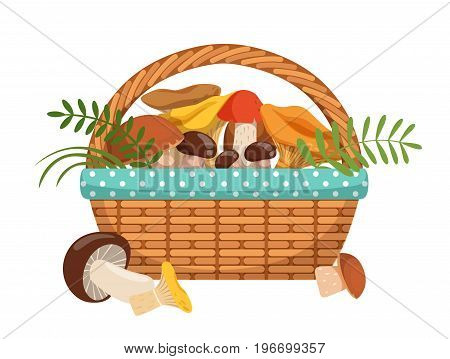 Different fresh mushrooms in basket. Vector illustrations set in cartoon style. Color mushroom in basket isolated on white