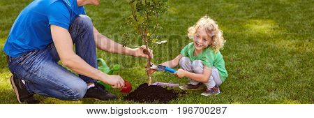Man And Boy Planting A Tree