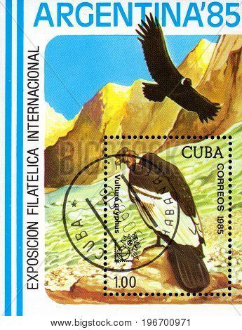 UKRAINE - CIRCA 2017: A postage stamp printed in Cuba shows bird Andean Condor Vultur gryphus from series Philatelic Exhibitions circa 1985