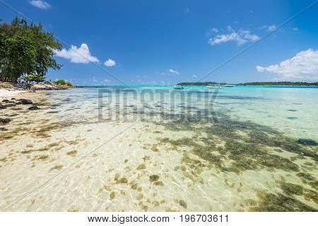 Wide-angle view of the Blue Bay Marine Park Mauritius Mahebourg Indian Ocean