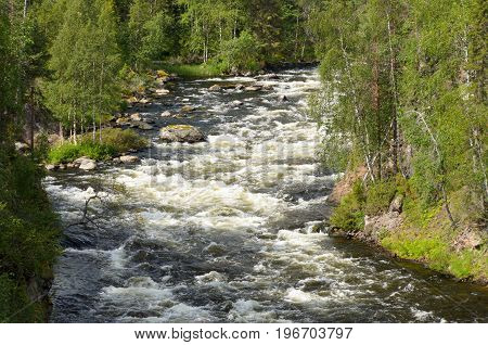 Rapids on the wild river in northern Finland in summer.