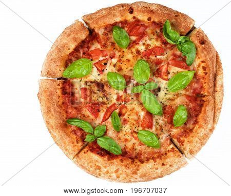 Freshly Baked Margherita Pizza with Tomatoes Cheese and Basil Leafs isolated on White background. Top View