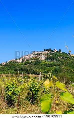 View of Istrian town of Motovun on picturesque hill Croatia