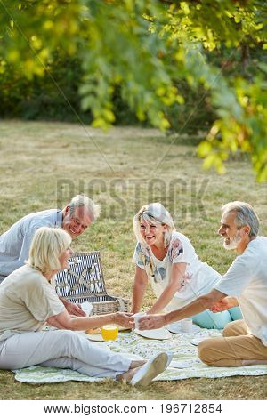 Group of seniors having fun at a picnic together in the park in summer