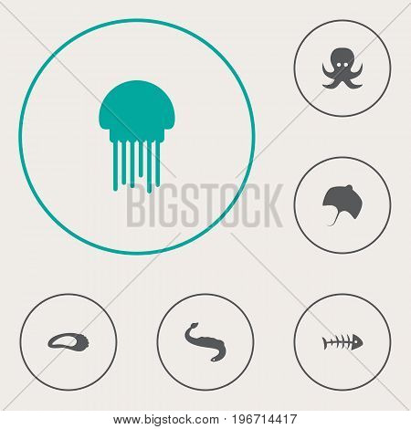 Collection Of Stingray, Remains, Devilfish And Other Elements.  Set Of 6 Sea Icons Set.