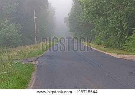 Asphalt road leading through the forest. Green grass grows on the side of the road. In the depths of deciduous forest. On one side you can see the poles of the power line. Above the ground there is a dense fog reducing visibility. It's daytime.