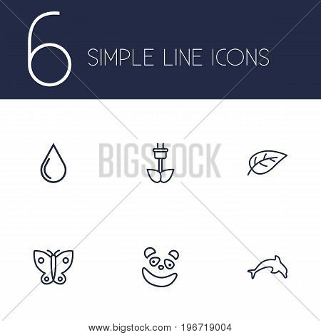 Collection Of Leaf, Butterfly, Eco Energy And Other Elements.  Set Of 6 Bio Outline Icons Set.