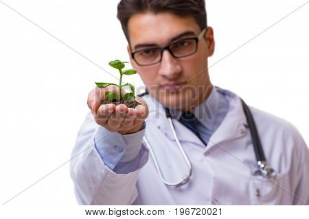 Scientist with green seedling in glass isolated on white