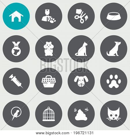 Collection Of Birdcage, Rat, Medallion And Other Elements.  Set Of 16 Pets Icons Set.