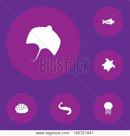 Collection Of Tortoise, Stingray, Tunny And Other Elements.  Set Of 6 Seafood Icons Set.