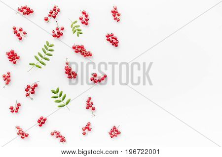 Berry theme. Red currant and leaves on white background top view.
