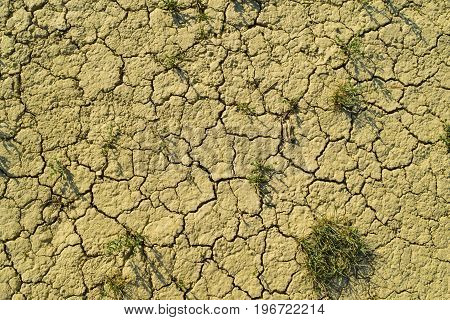 Dry cracked dirt with grass texture background. Clay desert. Illustration for news about soil erosion.