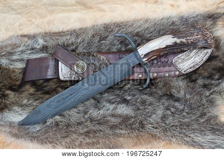 A big bowie knife with leather sheath displayed on top of a coon skin