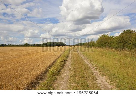 Farm Track And Straw Stubble
