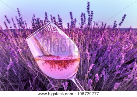 A glass of rose wine, held against a lavender field, with the reflection of the flowers in it, with a blue sky in the background, with a place for text