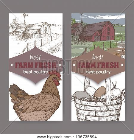 Set of two color farm fresh labels with farmhouse, chicken and eggs in wicker basket on white. Includes hand drawn elements.