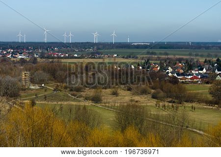 Suburban Natural Park in the foreground. Wind turbines in the background.
