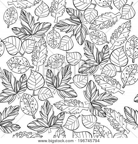 Vector illustration of Autumn graphic stylize seamless pattern. Doodle design for backdrop. Drawing leaves, foliage of maple nature.