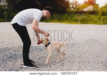 man of European appearance is trained by a Labrador dog puppy, throws a stick and plays. The concept of friendship between man and animals.