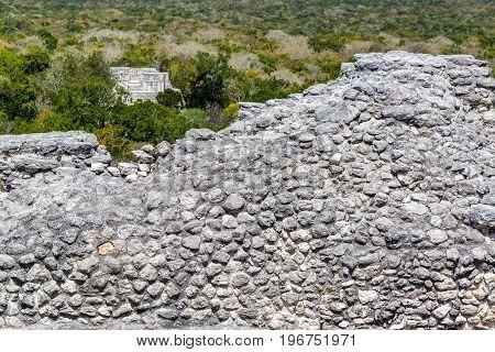 Ruins And Jungle In Calakmul