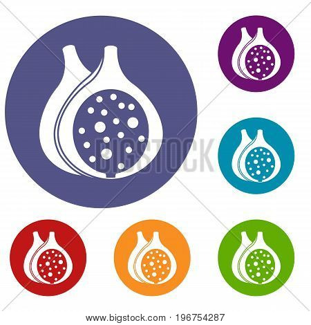 Fig fruit icons set in flat circle red, blue and green color for web