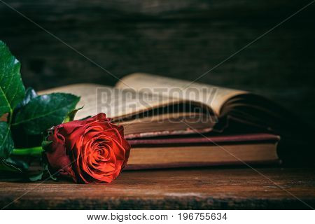 Red Rose And Vintage Books On Dark Background