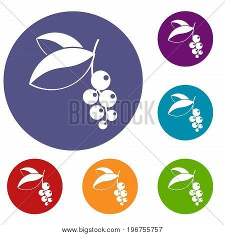 Currant berries icons set in flat circle red, blue and green color for web
