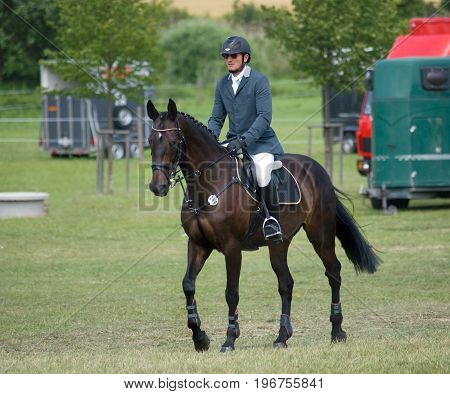 Rider on his horse going to start of showjumping