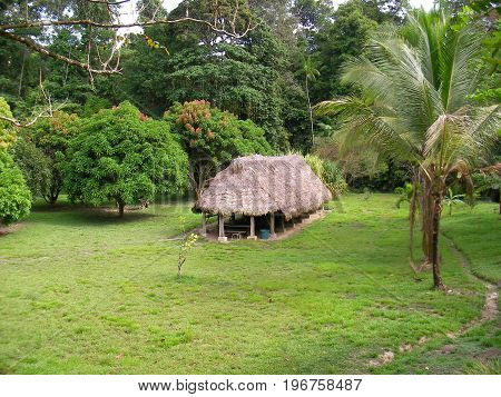 Eco lodge in the rainforest, French Guyana.