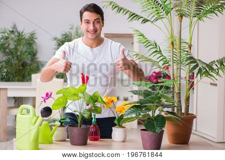 Young man in gardening concept at home