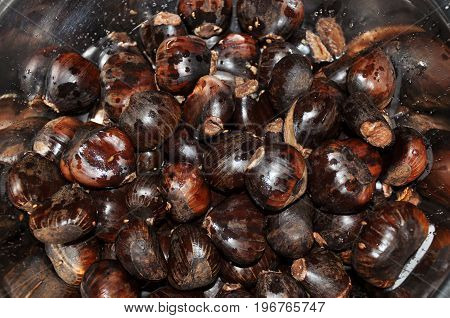 Close-up of bowl full of roasted walnuts, typical of Christmas dinner in Brazil. In Sao Manuel city, located in the São Paulo State, southwestern Brazil