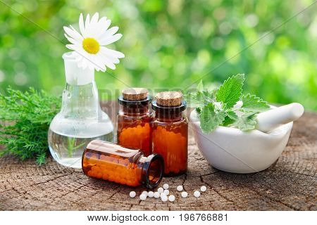 Bottles Of Homeopathic Globules, Mortar With Mint Leaves, Daisy Flower In Flask And Juniper Bunch. H