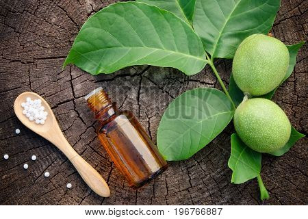 Walnuts, Bottle Of Juglans Regia Tincture And Homeopathic Globules. Homeopathy Medicine. Top View, F