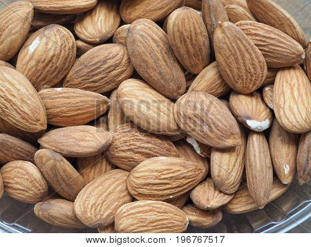 Dried Almonds Fruit