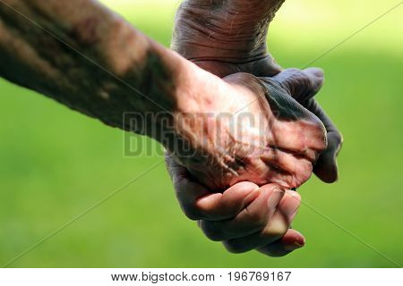 Close up of elderly couple holding hands.