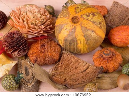 Assortment of autumn objects for a colorful background