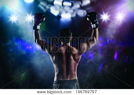 Back view of man boxer with raised hands in victory gesture. Concept of hard sport, glory and success. Very high resolution image
