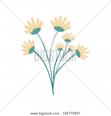 hand drawing yellow color daisy flower bouquet with several ramifications vector illustration
