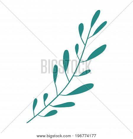 hand drawing green color leaf oval shape with several ramifications vector illustration