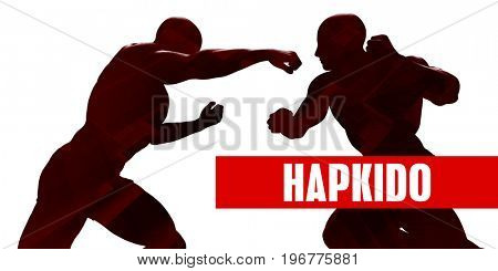 Hapkido Class with Silhouette of Two Men Fighting 3D Illustration Render
