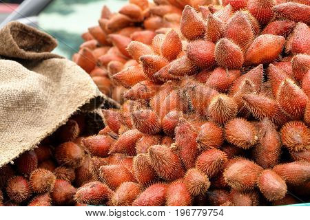 red fresh salacca zalacca salak fruit in basket for sale at the fruit market Thailand.